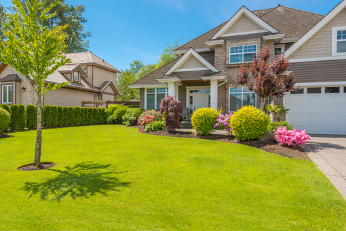How can we help you fall in love with your lawn again?